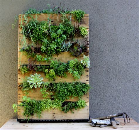 Vertical Garden Pallets Recycled Pallet Vertical Garden Design Sponge