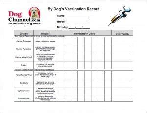 printable immunization schedule ontario free printable dog vaccination record free printable pet