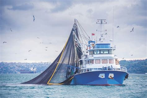skipper fishing boat fishing skipper fined for violations near cowichan bay