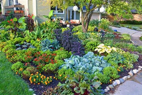 Creative Vegetable Gardens 17 Creative Vegetable Garden Designs To Inspire Your