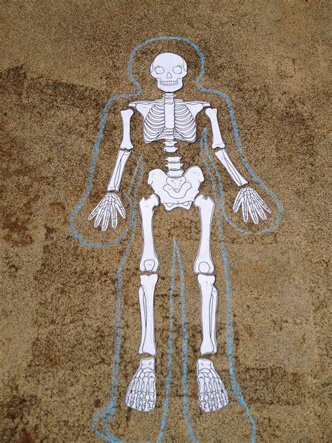 printable toddler size skeleton photos print out of human skeleton anatomy diagram charts
