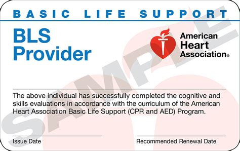 Basic Life Support Bls Provider Cpr Trio Safety Cpr Aed Solutions Bls Healthcare Provider Card Template