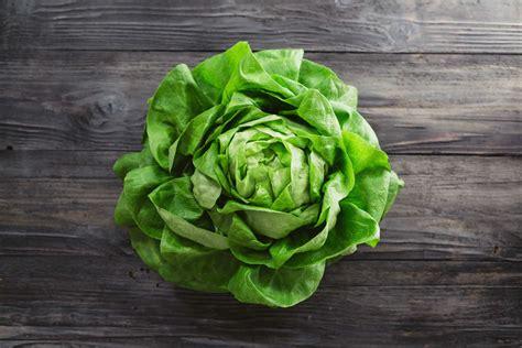 coltivare in vaso come coltivare la lattuga in vaso non sprecare