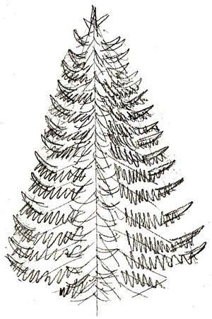 pencil drawings christmas trees coloring for draw a tree in pencil and color it how to draw painting and