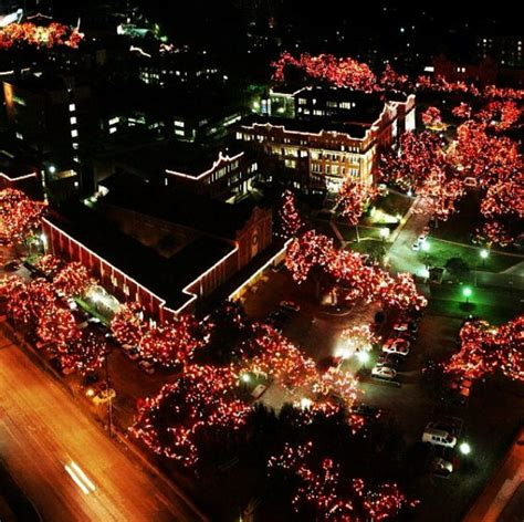 1000 images about uiw on pinterest