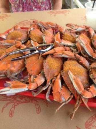 the crab house wildwood crab house outdoor bar picture of the crab house wildwood crest tripadvisor