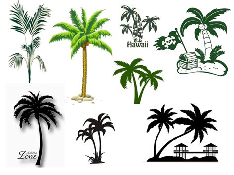 wandtattoo kinderzimmer palme wandtattoo palme