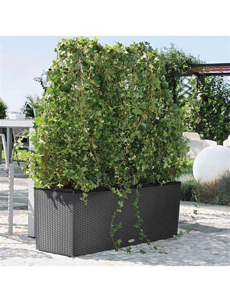 Brises Vues Ikea by Brise Vue Jardini 232 Re