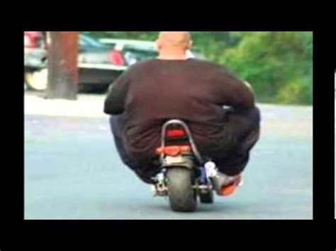 imagenes y videos graciosos gordos graciosos youtube