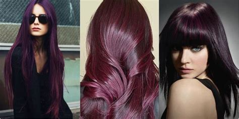 Jepit Rambut Ombre Hair Extension Eggplant Purple hair color trends in 2015 m2hair s