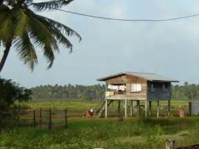 houses in guyana 43 best art guyanese diaspora images on pinterest