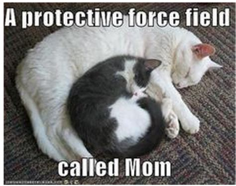 Meme Mother S Day - your mom would approve of these 10 funny mother s day memes