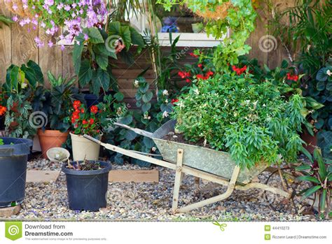rock garden with potted plants pretty potted plants stock photo image 44410273