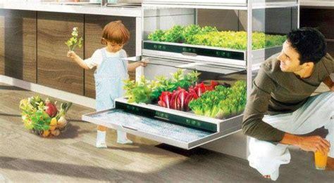 il giardino idroponico i giardini idroponici tutto in 1