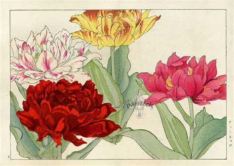 imagenes de flores japonesas tanigami konan woodblock prints 1917