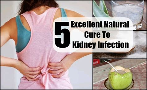 kidney infection 28 kidney infection how long does it take to get