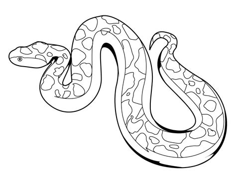 Printable Snake Coloring Pages free printable snake coloring pages for