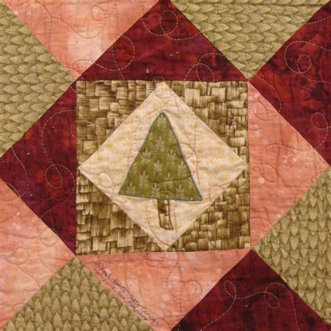Quilt Carolina by Nifty Fifty Quilters Of America Eighth 50 State Quilt