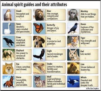 test animale guida xing fu ancient secrets animal spirits