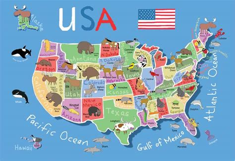 usa map children s puzzles puzzlewarehouse