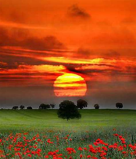 imagenes de paisajes llaneros pz c paisajes