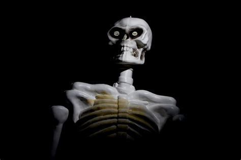 Spooky Search Spooky Skeleton Www Pixshark Images Galleries With A Bite