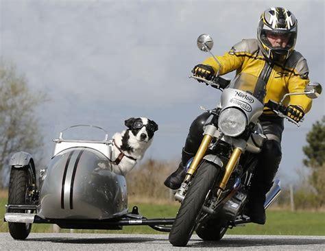Motorrad Und Beiwagen by Hund Im Boot Motorrad Gespanne