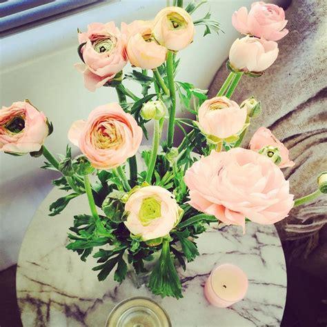 Bunga Mawar Bentuk Cocok Untuk Kado Hadiah 2 5 bunga hadiah yang cocok sesuai kepribadian merahputih