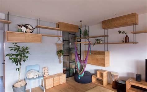 casa stile giapponese casa in stile giapponese a misura di gatto animali pucciosi