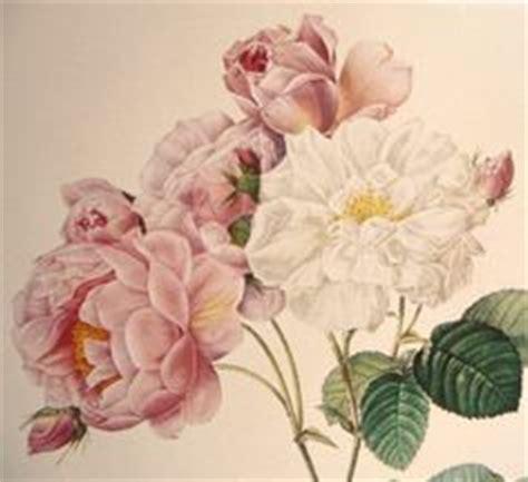 the art of botanical 1851497609 vintage flower art botanical prints peony illustration peony and illustrations
