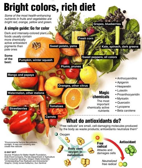fruit vs vegetable list high calorie vegetables and fruits top list how to