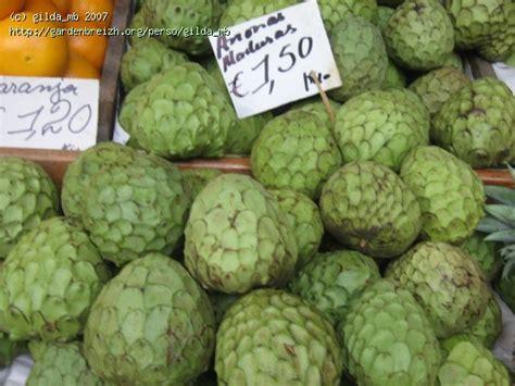 fruit l anone anone annona cherimola funchal le march mercado dos