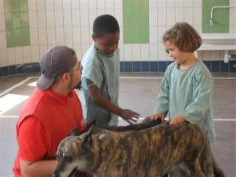 casa di riposo chio cani visitatori nelle scuole e casa di riposo bambini e