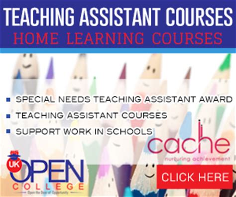 why become a teaching assistant 7 reasons to become a ta teaching assistant questions
