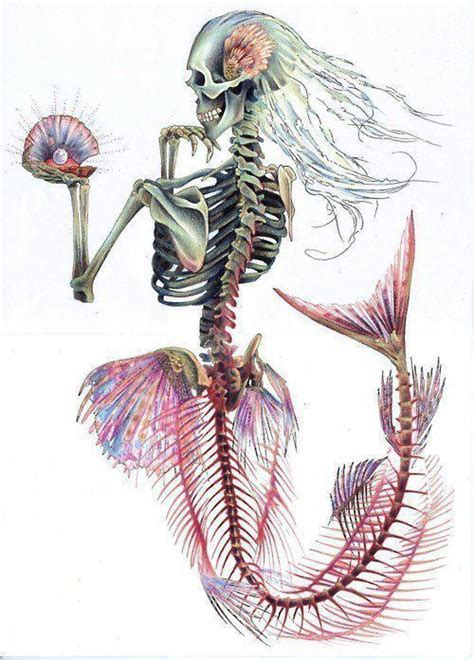 mermaid skeleton on