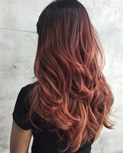 rose gold hair dye dark hair 1000 ideas about gold hair colors on pinterest rose