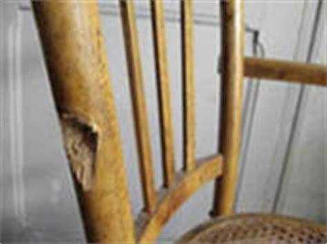 restaurer une chaise cann 233 e esprit cabane idees