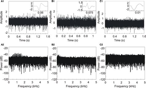 neural pattern definition frontiers wavelet transform for real time detection of