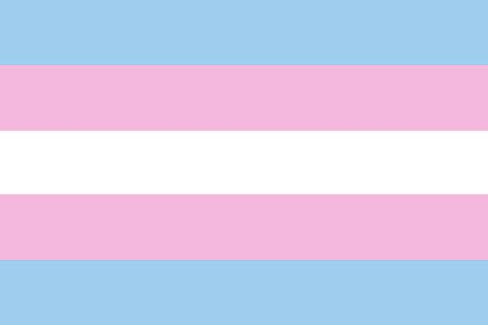 trans flag colors t central the transgender flag