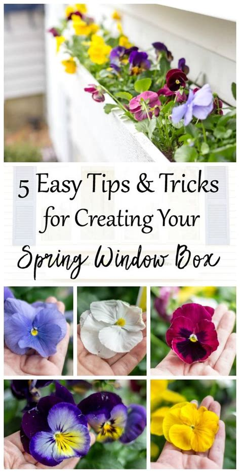 8 Of My Favorite Style Tips And Tricks by I Been Planting Window Boxes For Years Time I