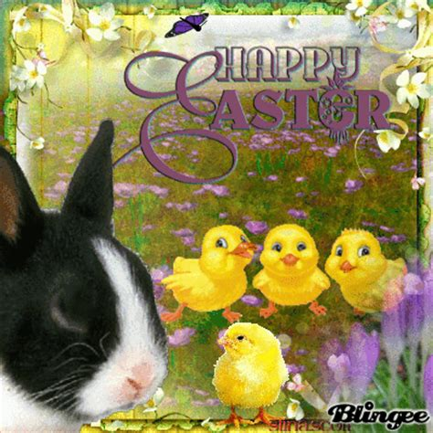 why do you hide eggs on easter easter and giggles picture 128618358 blingee