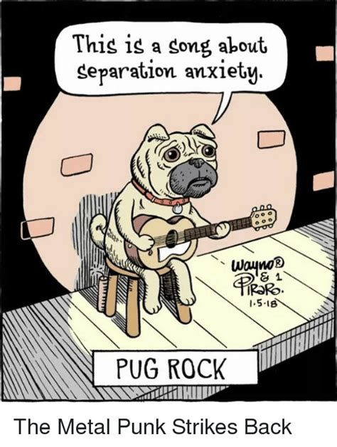 pug separation anxiety this is a song about separation anxiety d81 iror 151b pug rock the metal strikes
