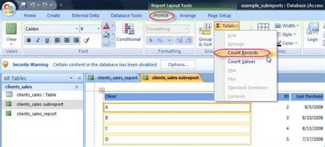 what is layout view in access 2007 counting in a microsoft access 2007 report database