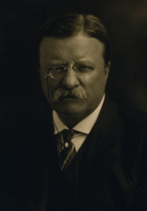 presidency of theodore roosevelt wikipedia the free free photo president theodore roosevelt historical