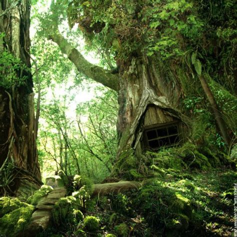 tree houses fairy tale m2m moviez a collection of beautiful fantastic and fairy tale like tree houses