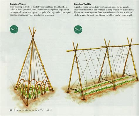 Make Your Own Trellis your own garden trellis 365preppers