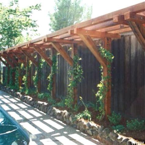 Garden Arbor Construction 25 Best Ideas About Trellis On Trellis Ideas