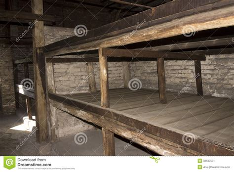 concentration c bunk beds accommodation in auschwitz ii birkenau editorial photo