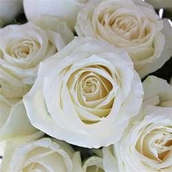 Centerpiece For Table Avalanche White Rose