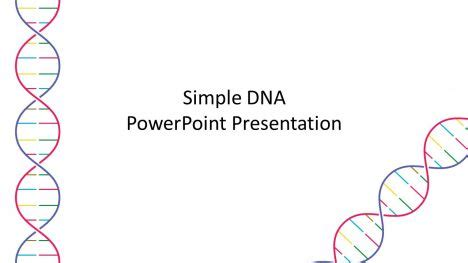 what is a template in dna simple dna template